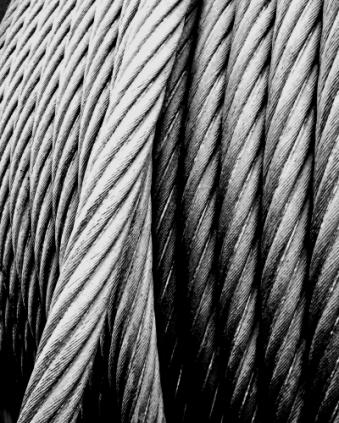 Nerven aus Stahl (Fotograf: Johannes Hemmerlein)
