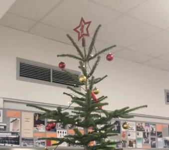 Weihnachtsbaum mit  Stern Beitragsbild Dia