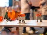 17.) Unsere tanzenden Roboter